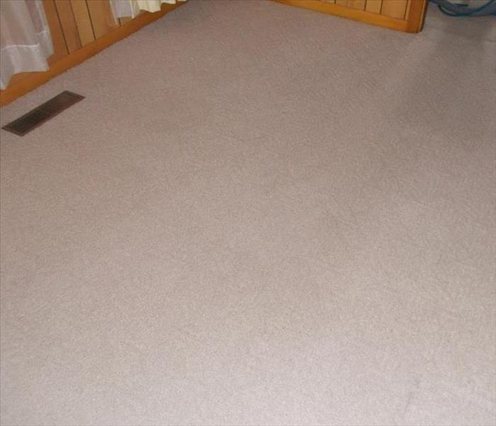 Rental Property Carpet Cleaning, Statesboro, Ga. After