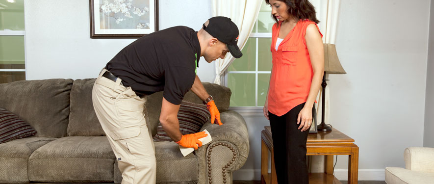 Statesboro, GA carpet upholstery cleaning